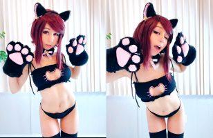 Kitty Kat By @KiwiSunset