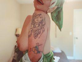 Link Zelda Franchise